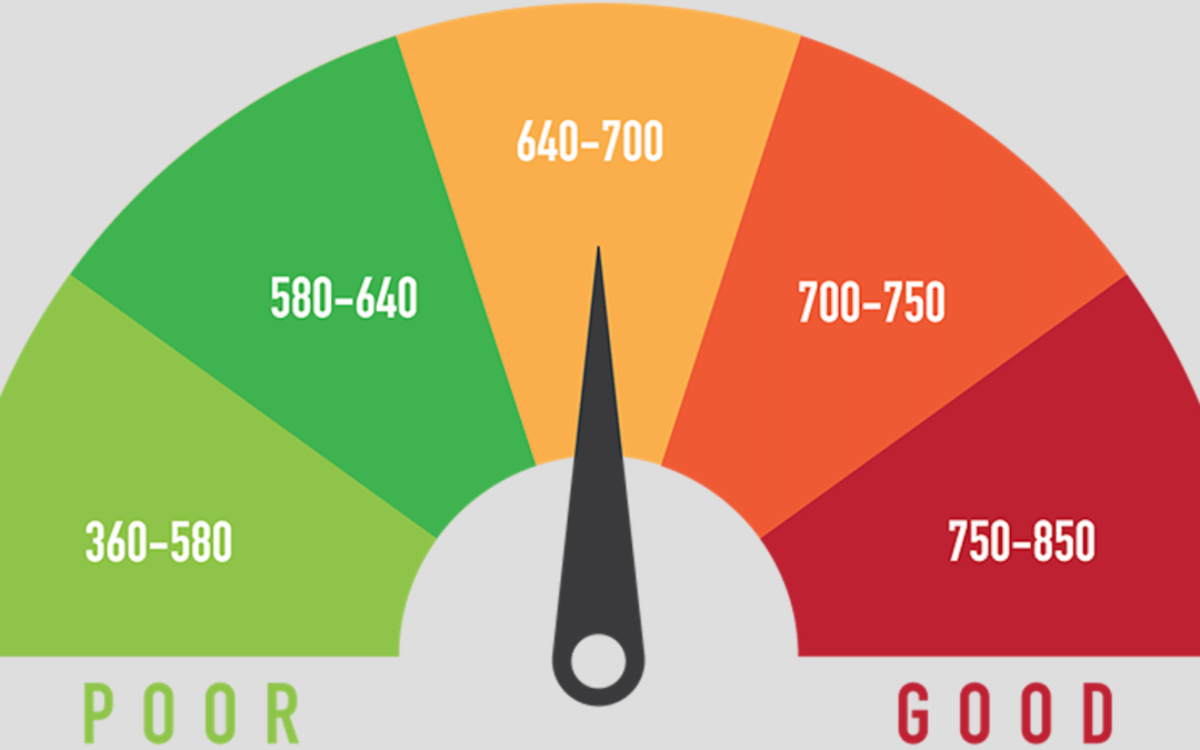 7 Steps to Take to Improve Your Credit Score